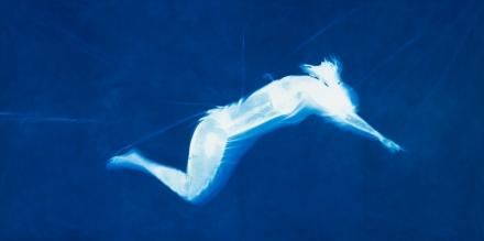 BlueSwimmer_Frame001